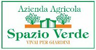Spazio Verde - Logo