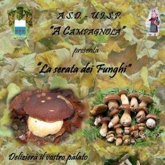 specialità funghi