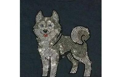 Disegno strass su maglia