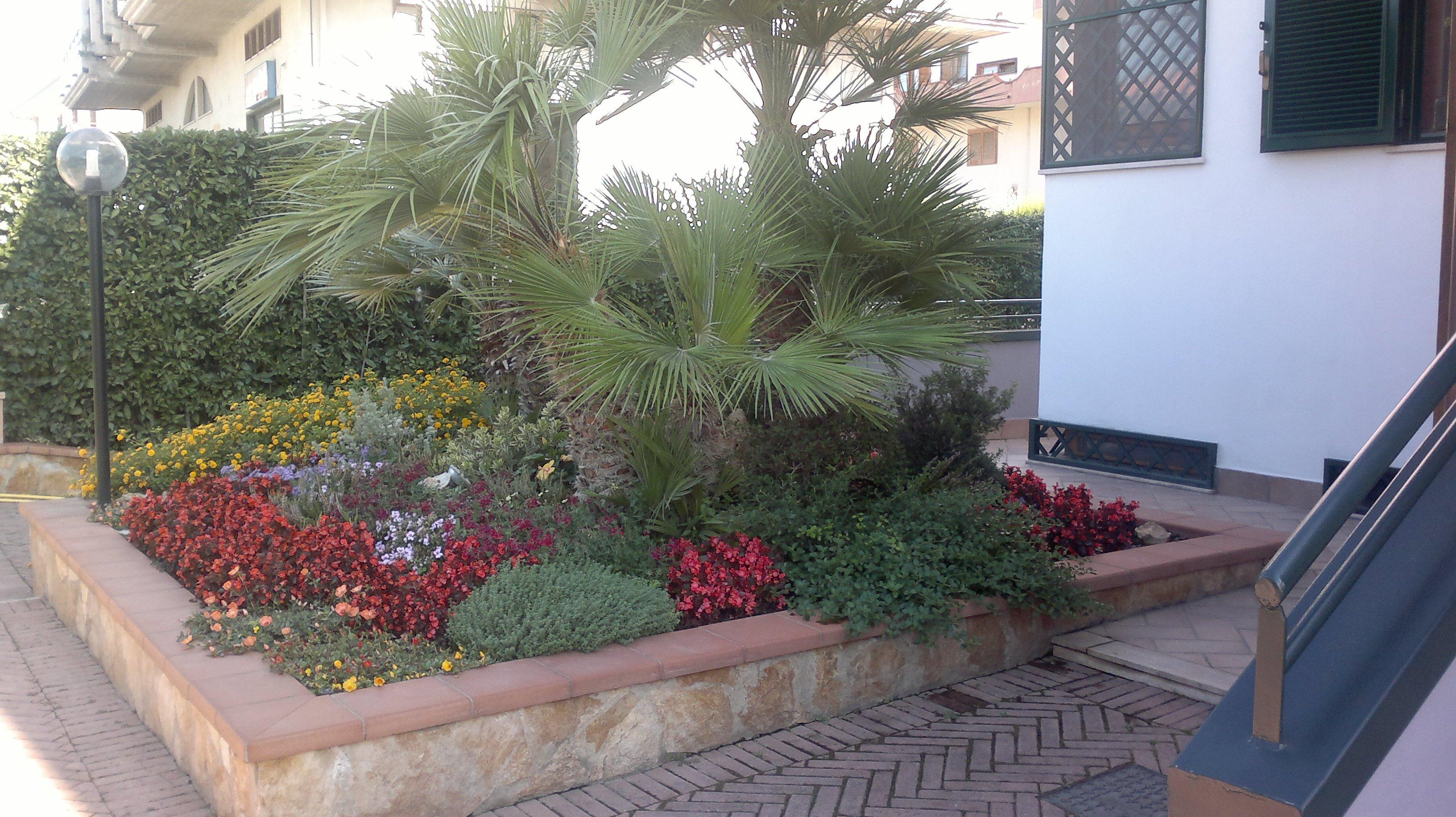 una palma con attorno dei fiori rossi,viola, gialli e un lampione della luce