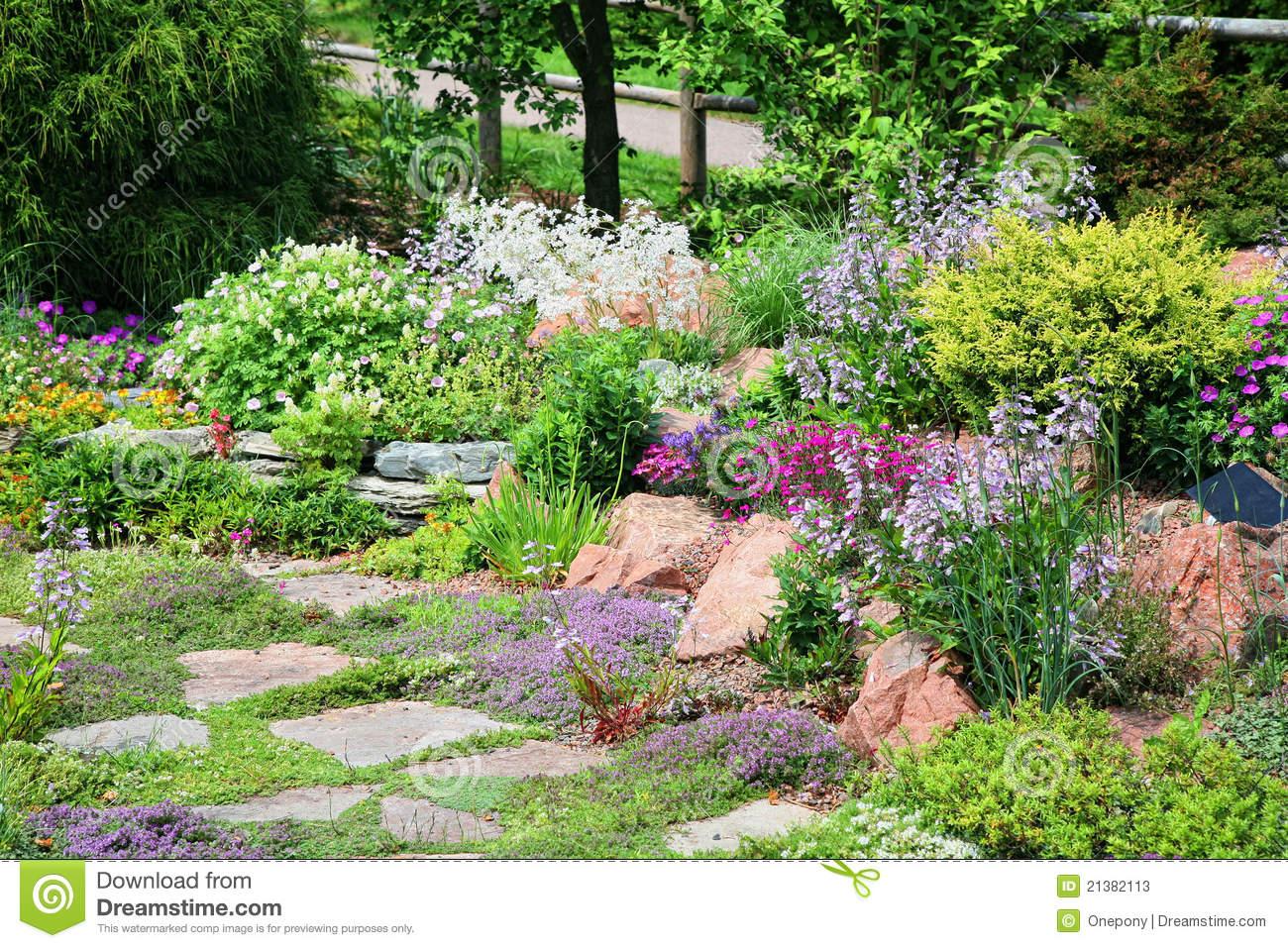 delle piante fiorite di diversi color in un giardino