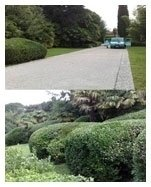 manutenzione parchi