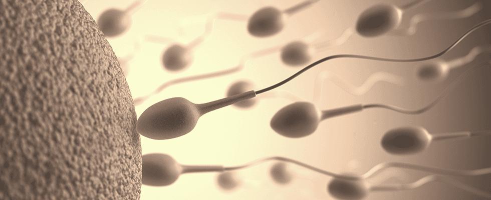 urologo andrologo napoli vomero