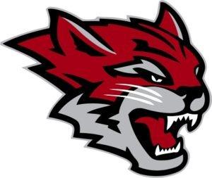 wildcat (1)