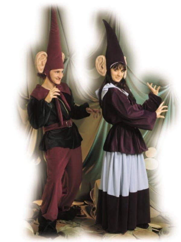 costume elfi