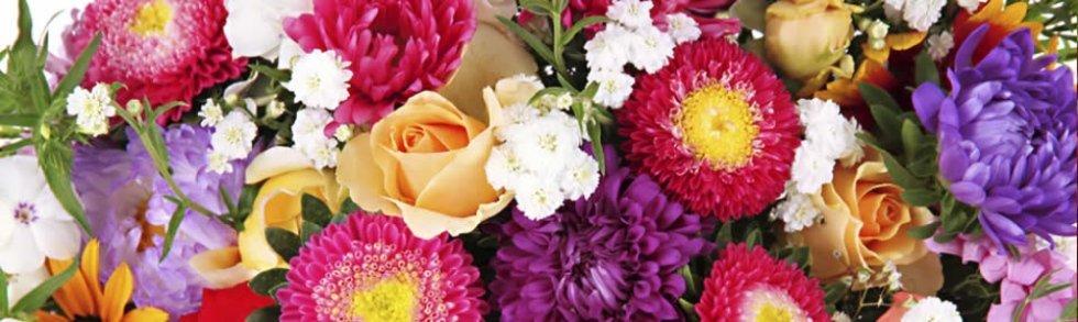 vendita al dettaglio di fiori e piante