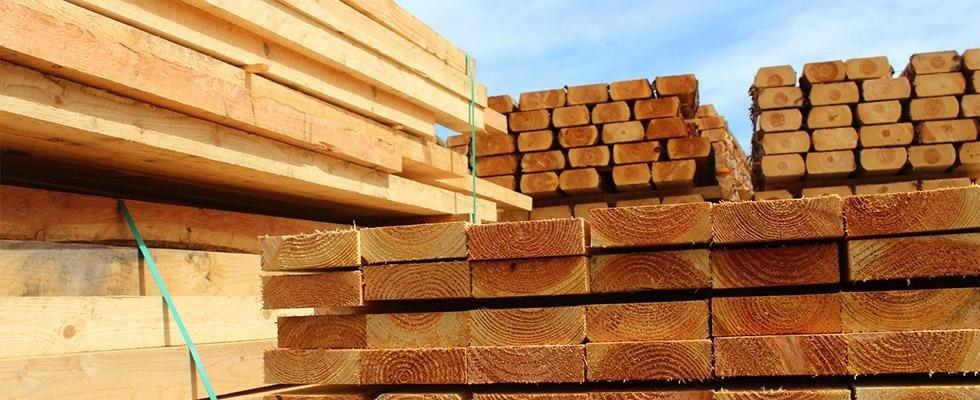 Legno e legname