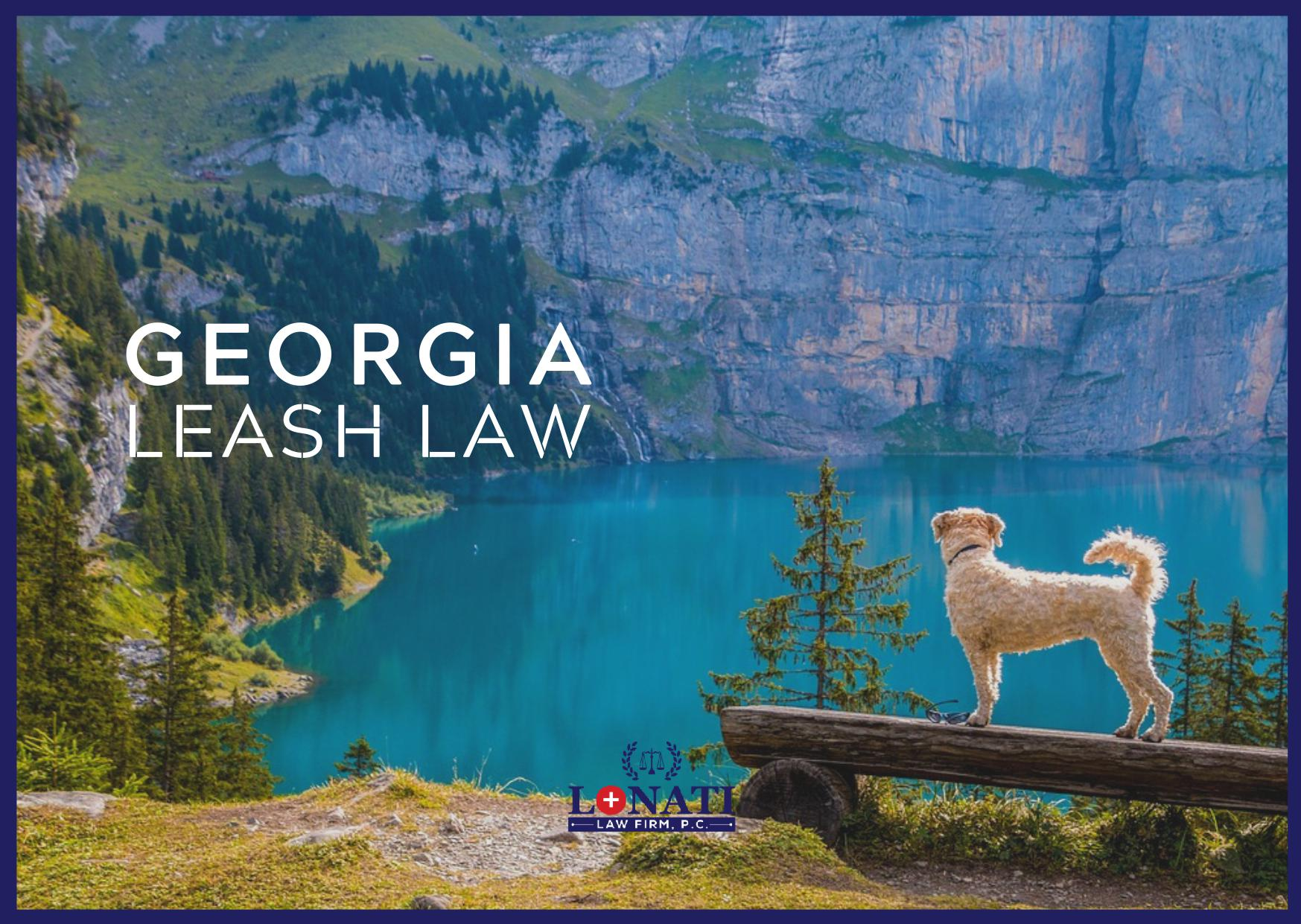 Physical Restraint Common At Georgias >> Georgia Leash Law What Should You Know