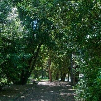 Parco Naturale, San Rossore