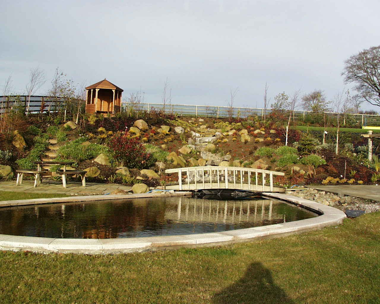 artificial pond design