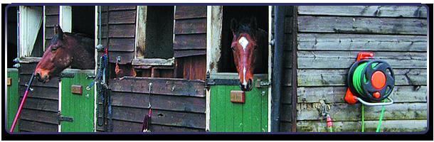 Riding holidays - Milton Keynes - Loughton Manor Equestrian Centre - Barn