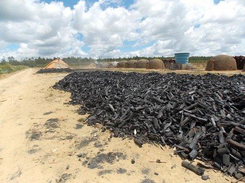 Produzione carbone
