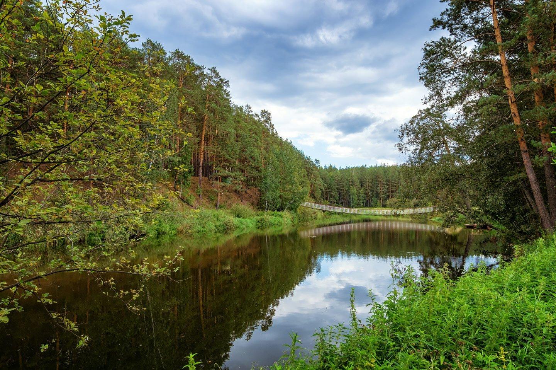 paesaggio con lago foresta