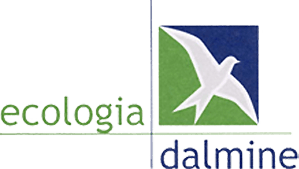 Logo Ecologia Dalmine