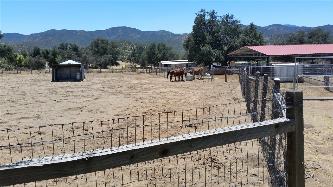 horse ranch ranchita, ca