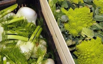 vendita finocchi e broccoli