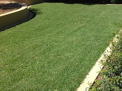 Instant synthetic lawns adelaide north east for Landscaping adelaide north