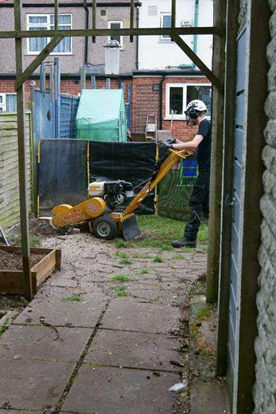 Hard at work using the smaller stump grinder.