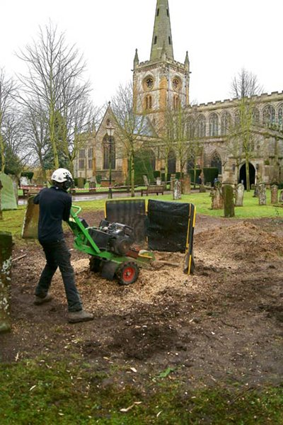 Our largest stump grinder in action.