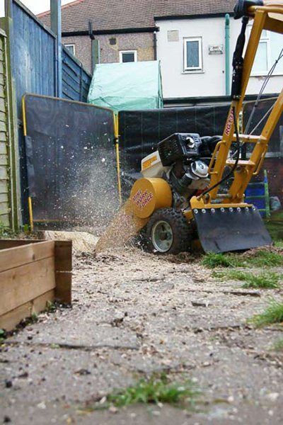 Our smaller stump grinder in action