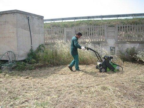 taglio erba