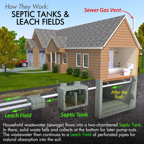 Plumbing by sewer expert in Cincinnati