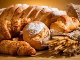 pane fresco quotidiano