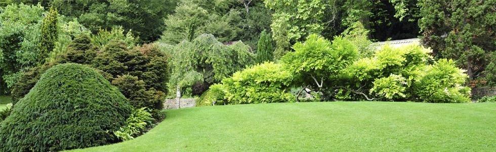 manutenzione aree verdi Ancona