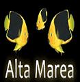 ALTA MAREA - TUTTO PER L'ACQUARIOLOGIA - LOGO