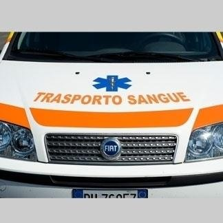trasporto sangue