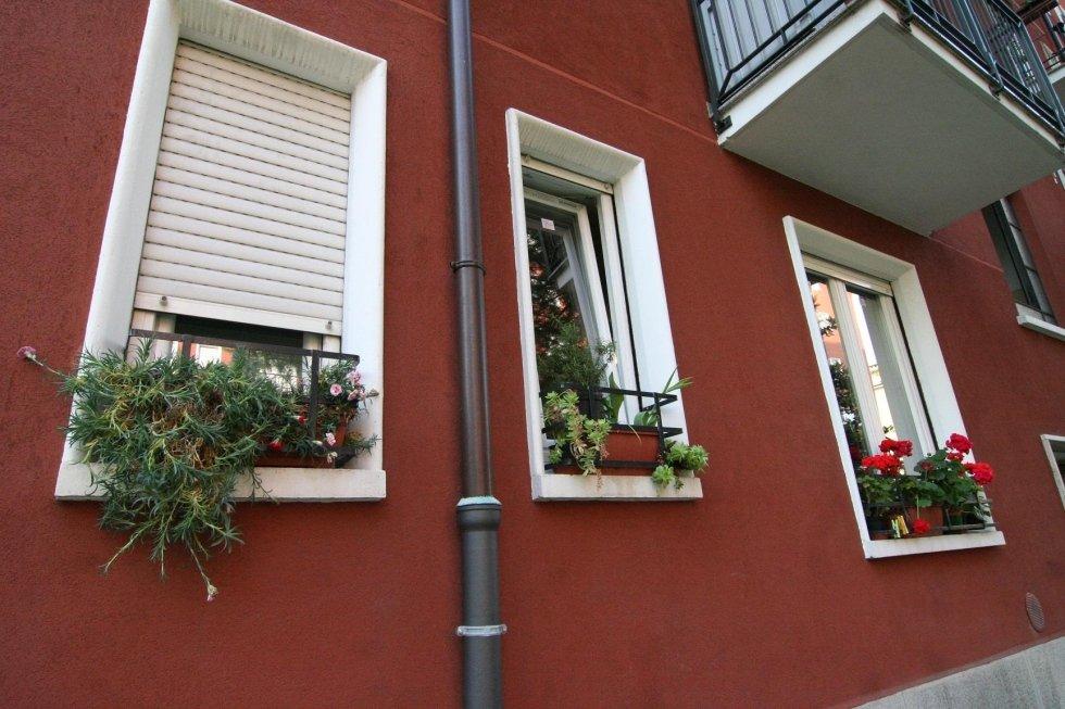 tre finestre con diversi tipi di fiori sul davanzale