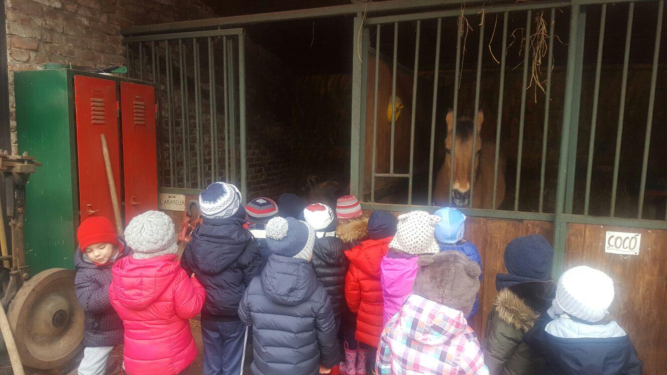 bambini nella fattoria didattica