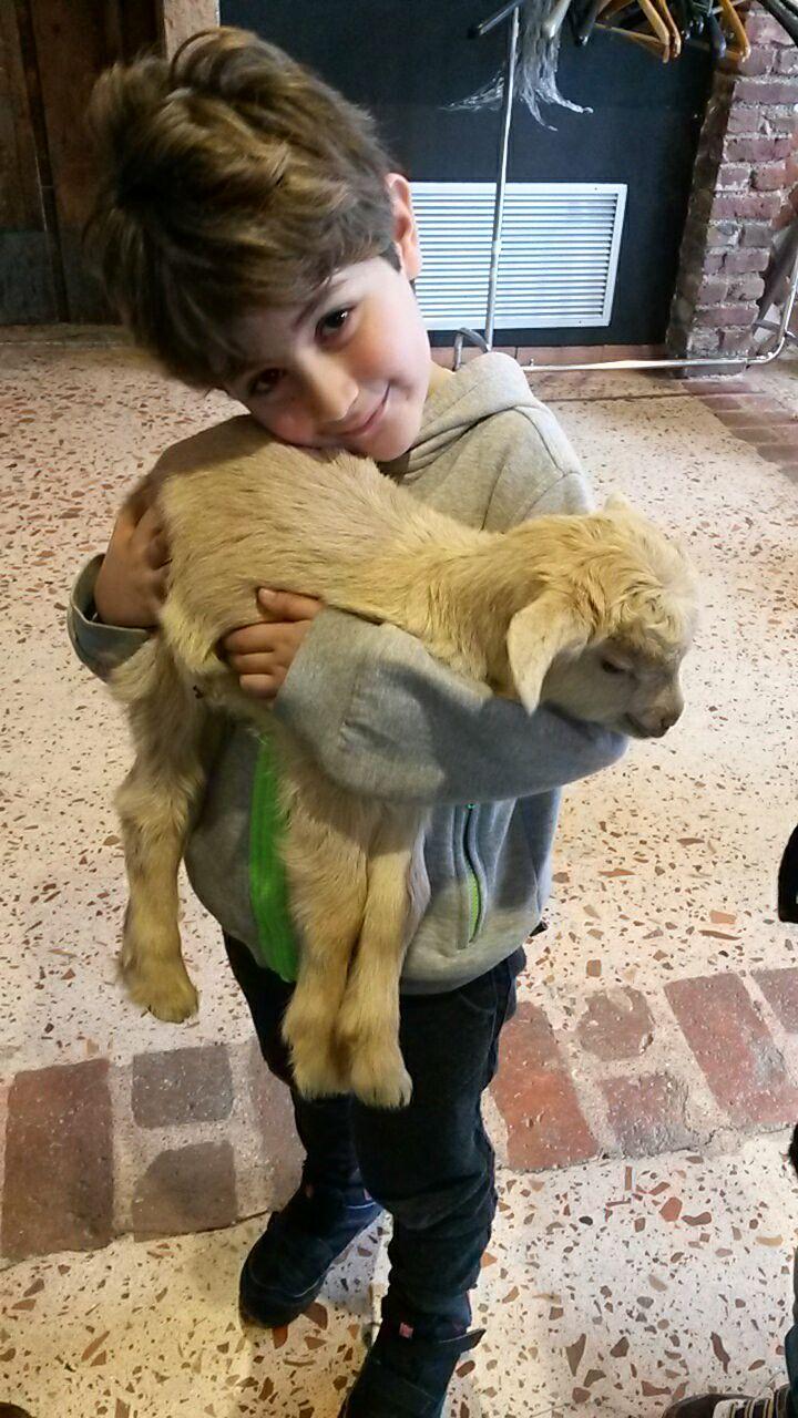 bambino nella fattoria didattica