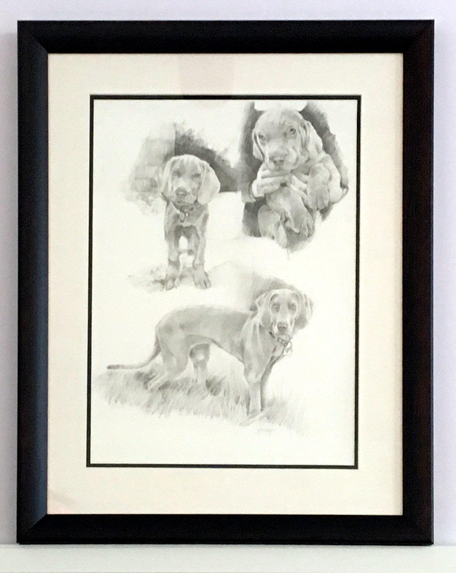 Dog portraits commission Mac's Studio