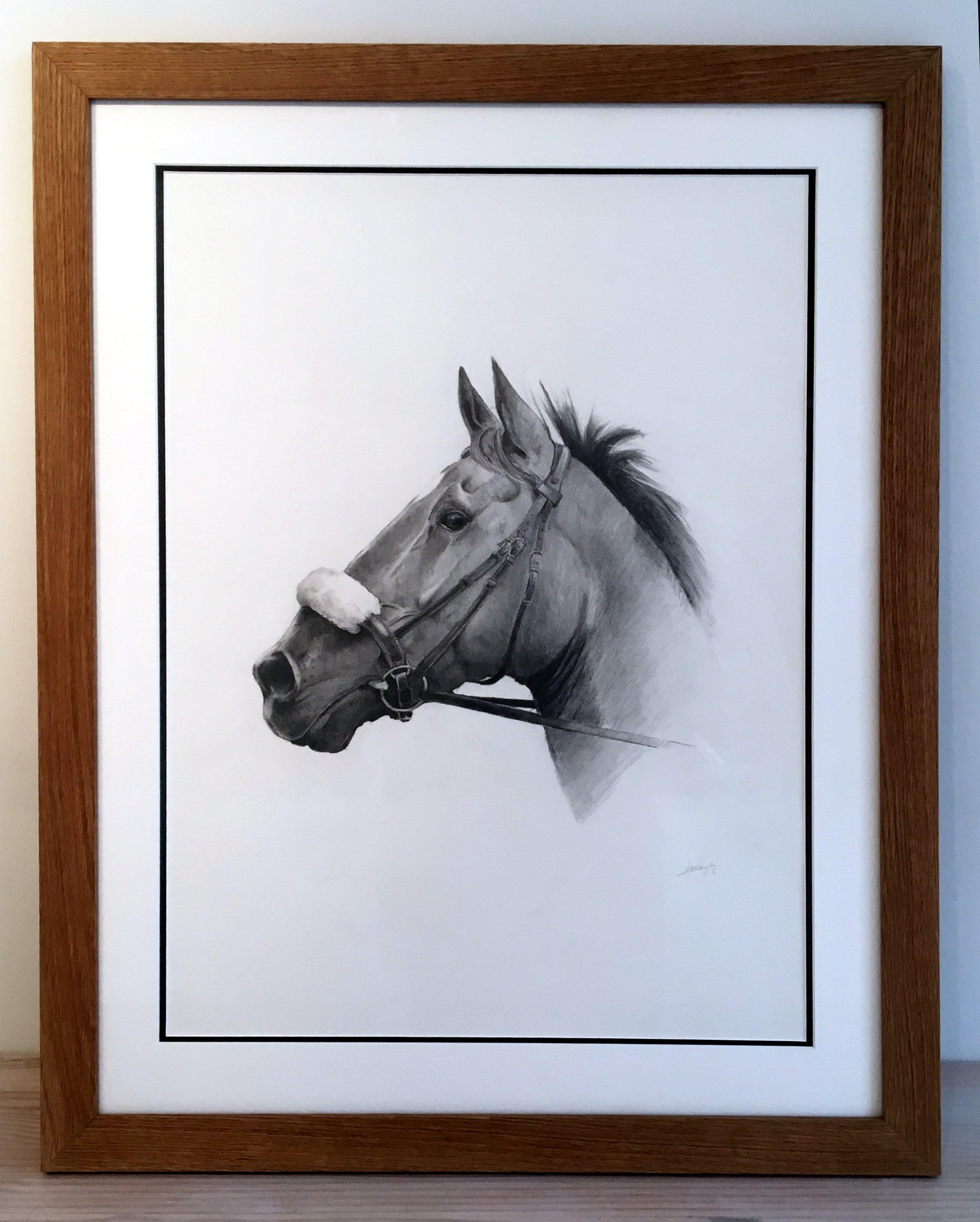 Horse portrait commission Mac's Studio