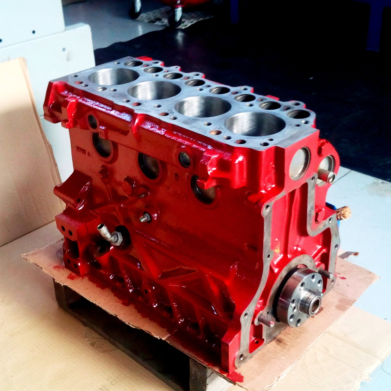 rivisione motore