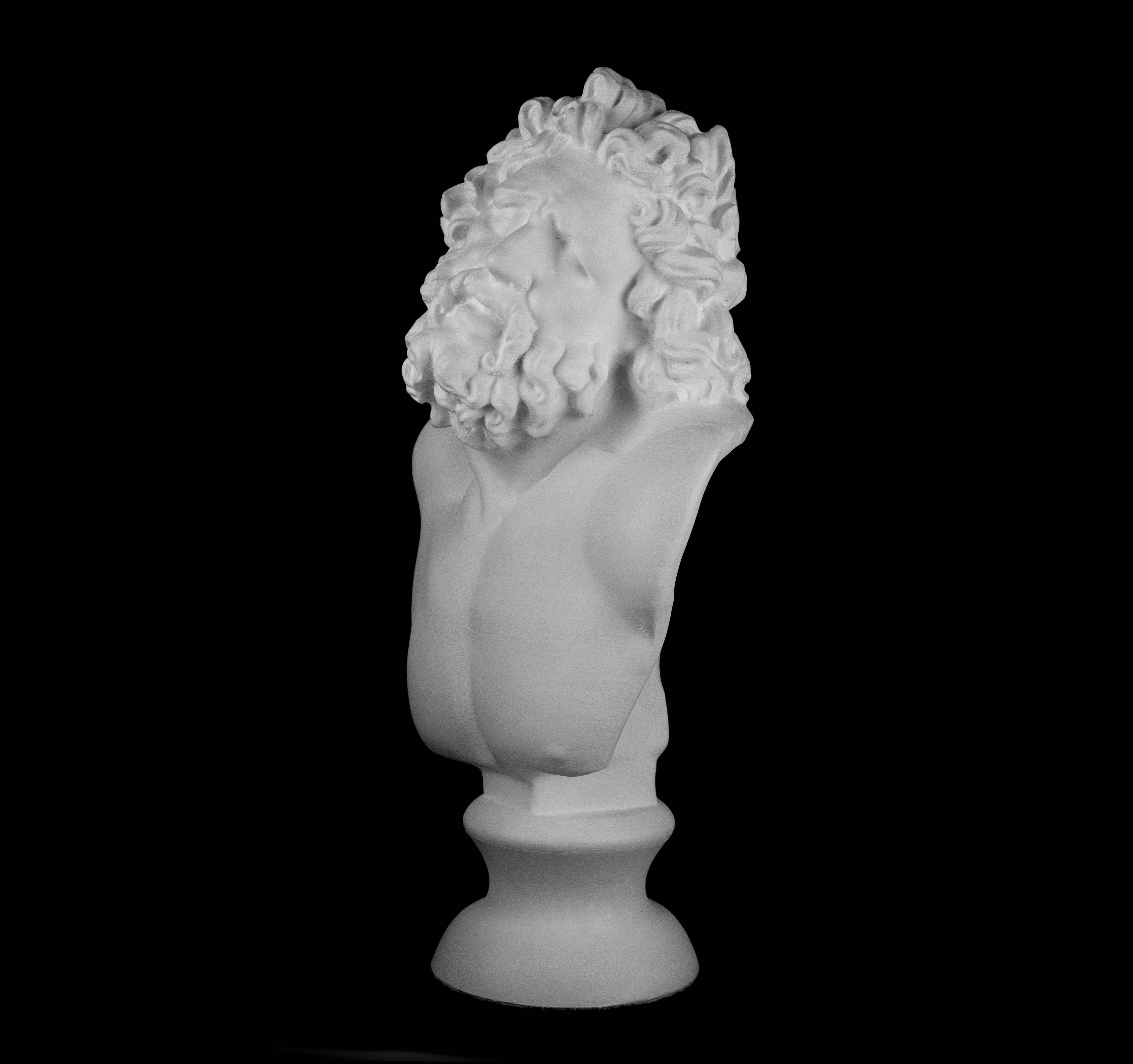 3D Printed Laocoon