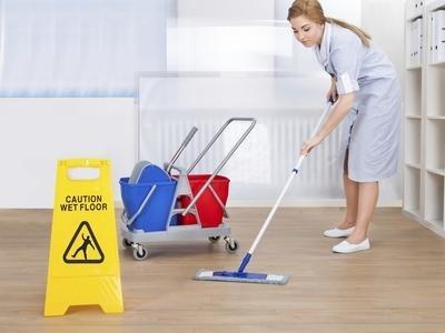 pulizie disinfestazione firenze