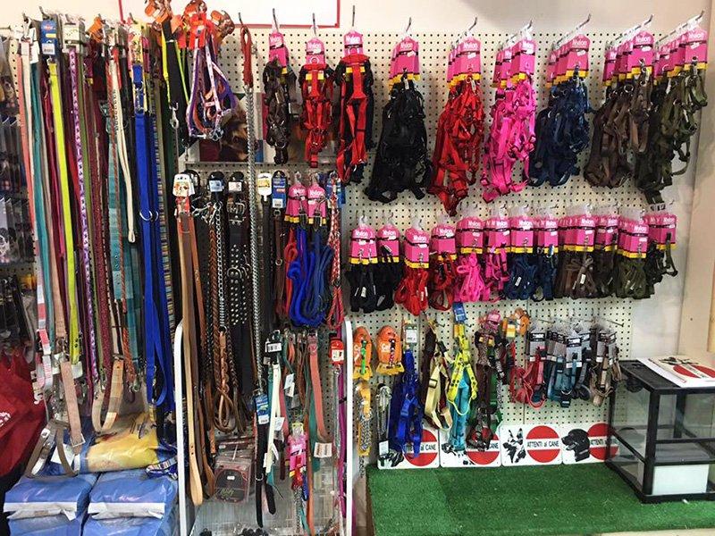 guinzagli in vendita nel nostro negozio Animal's Planet, Spadafora, Messina
