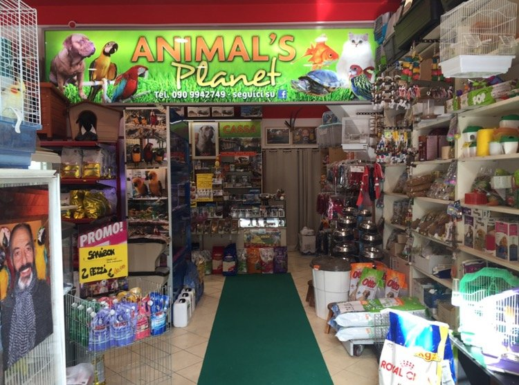 Animali Animalsplanet