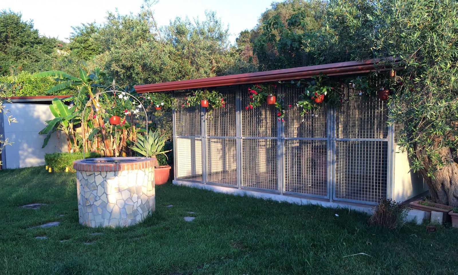 il nostro negozio, visuale interna Image-  Servizio di pensione per cani a 5 stalli Spadafora