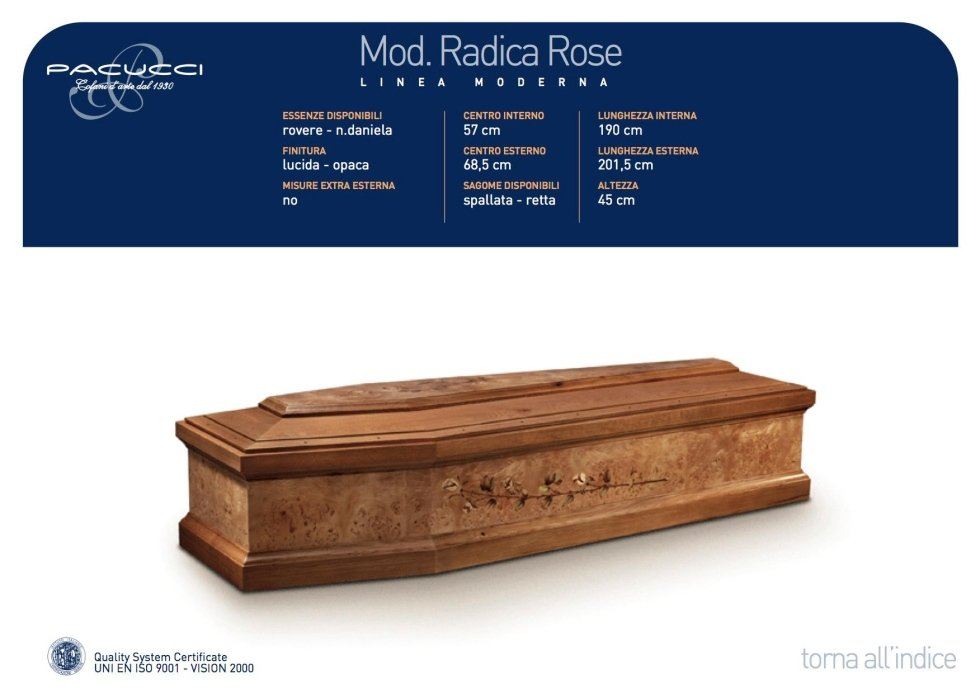 mod.radica rose