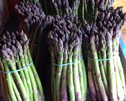 Mazzi di asparagi