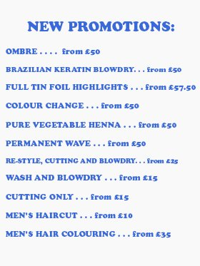 Hair and beauty - Fortune Green, London - Atelier Hair and Beauty - Hair colouring