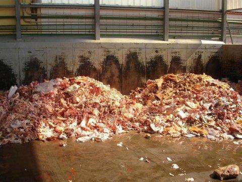ritiro rifiuti di macellazione