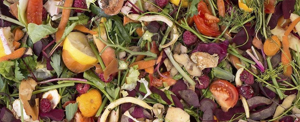 Smaltimento rifiuti alimentari