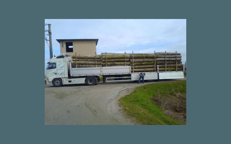consegna legna to