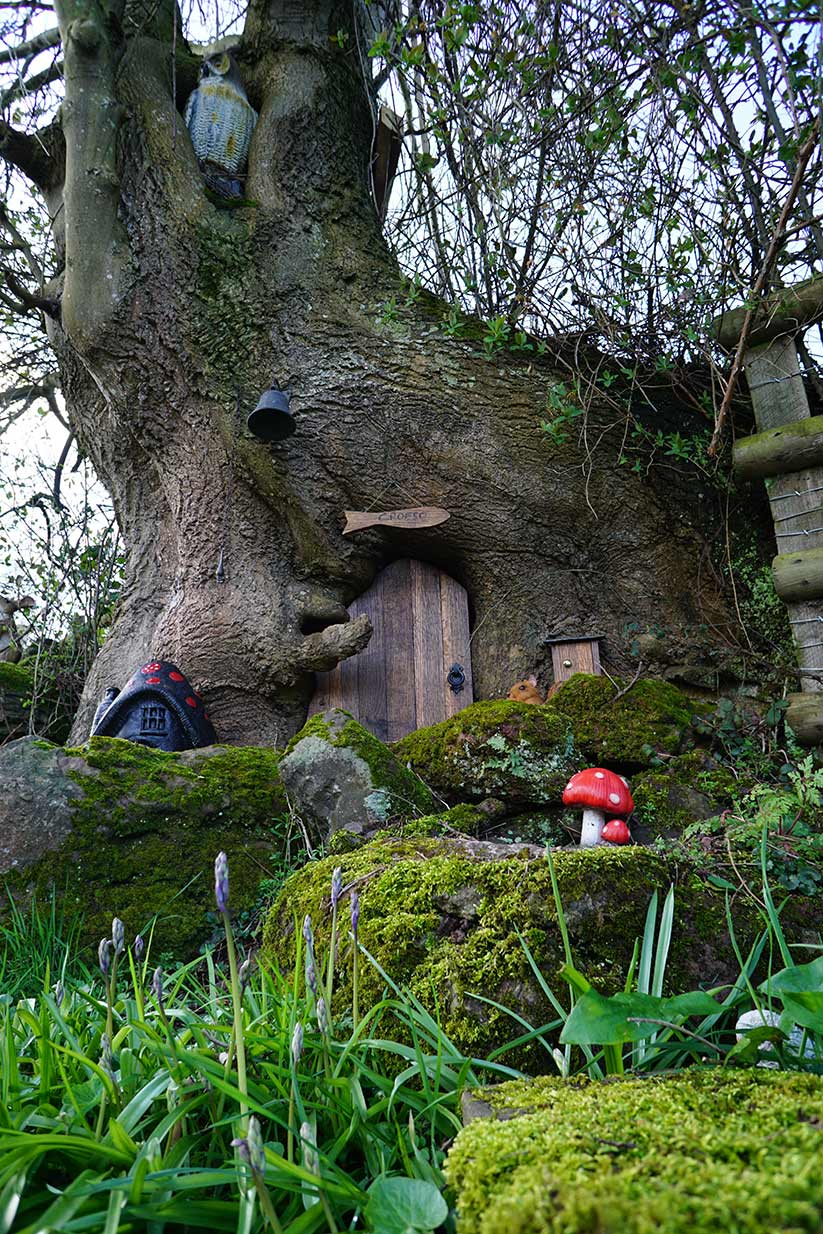 fairy house at the draen