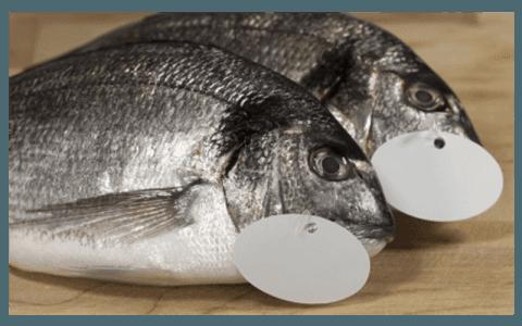 Etichette per mercato ittico