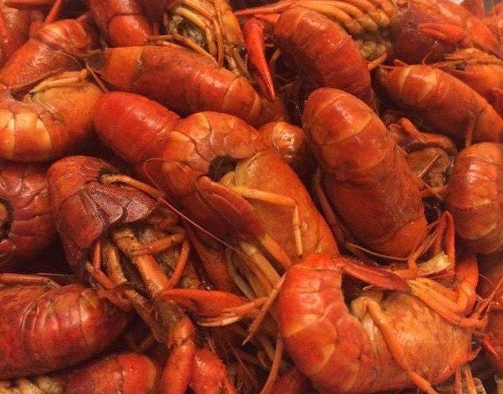 fresh shrimp Destin, FL